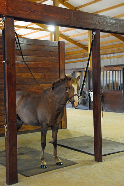 Other Features Include 24 Hour Supervision, Grooming Cross Ties Indoors And  Out, Indoor Wash Stall With Hot Water, Automatic Fly Spray System, ...